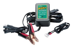 Our Battery Tender Junior does the job at a great price. (Click the pic for more info.)